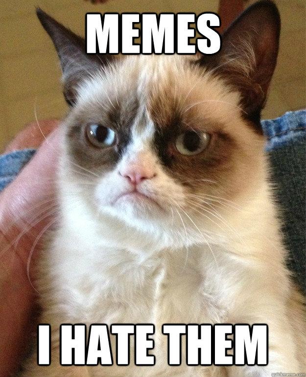 Memes I hate them - Memes I hate them  Misc