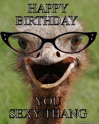 HAPPY BIRTHDAY  YOU SEXY THANG Judgmental Bookseller Ostrich