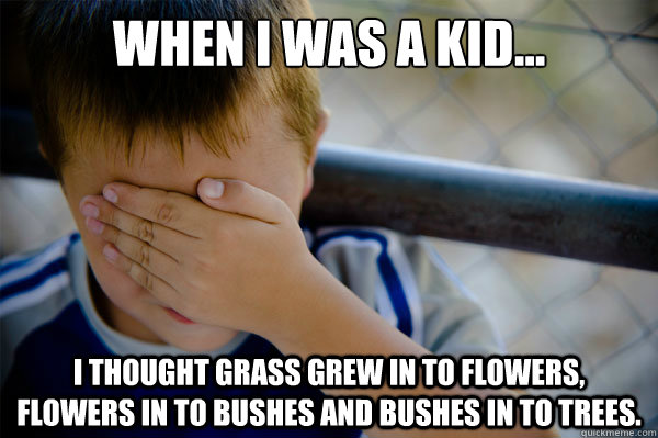 When I was a kid... I thought grass grew in to flowers, flowers in to bushes and bushes in to trees. - When I was a kid... I thought grass grew in to flowers, flowers in to bushes and bushes in to trees.  Misc