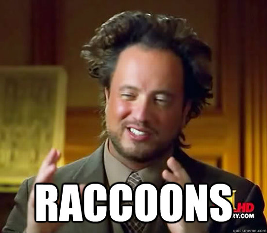 Raccoons -  Raccoons  Ancient Aliens