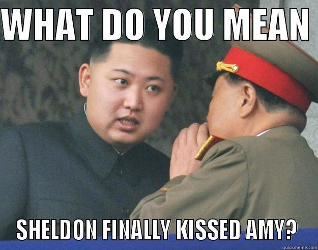 BIG BANG THEORY - WHAT DO YOU MEAN  SHELDON FINALLY KISSED AMY? Hungry Kim Jong Un