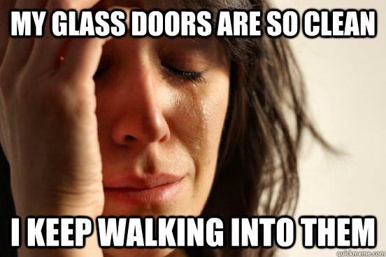 my glass doors are so clean i keep walking into them - my glass doors are so clean i keep walking into them  First World Problems