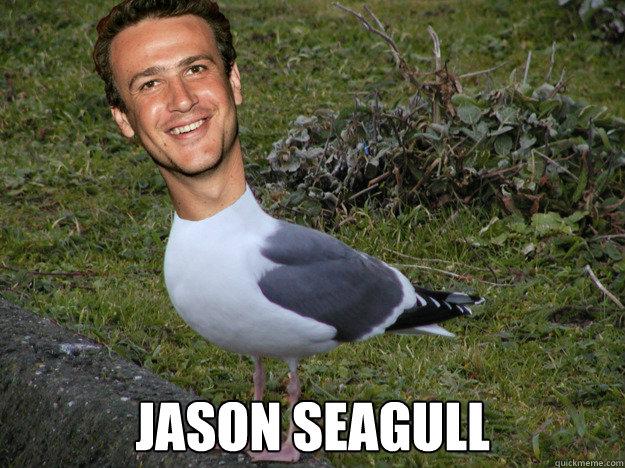 Jason Seagull