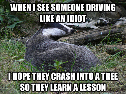 When I see someone driving like an idiot I hope they crash into a tree so they learn a lesson