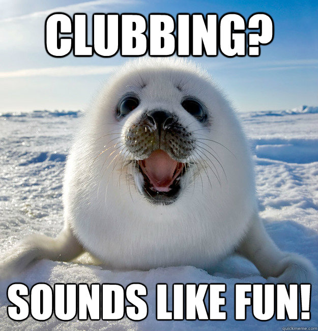 CLubbing? Sounds like fun! - CLubbing? Sounds like fun!  Naive Seal Cub