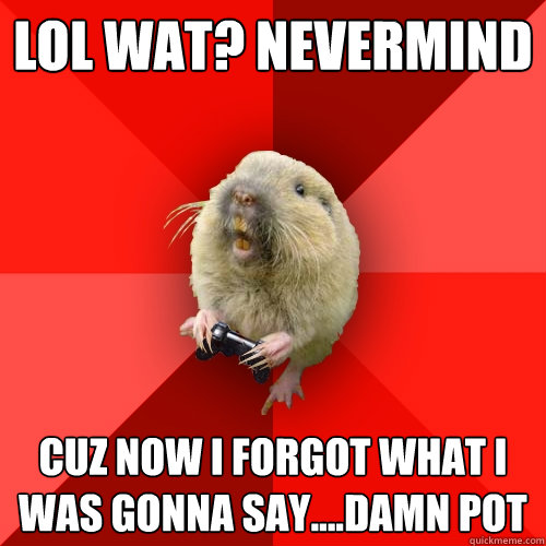 lol wat? nevermind cuz now i forgot what i was gonna say....damn pot - lol wat? nevermind cuz now i forgot what i was gonna say....damn pot  Gaming Gopher