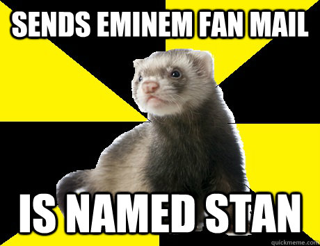 sends eminem fan mail is named stan