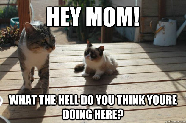 hey mom! what the hell do you think youre doing here? - hey mom! what the hell do you think youre doing here?  Misc