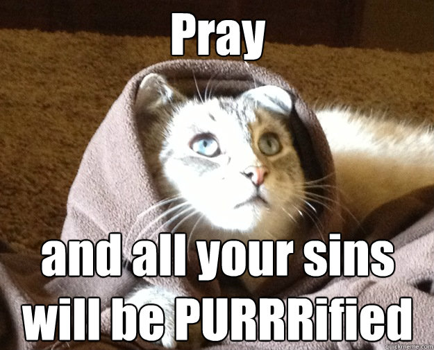 Pray and all your sins will be PURRRified