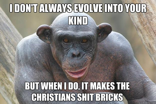 i don't always evolve into your kind but when i do, it makes the christians shit bricks  The Most Interesting Chimp In The World