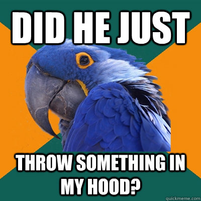 did he just throw something in my hood? - did he just throw something in my hood?  Paranoid Parrot