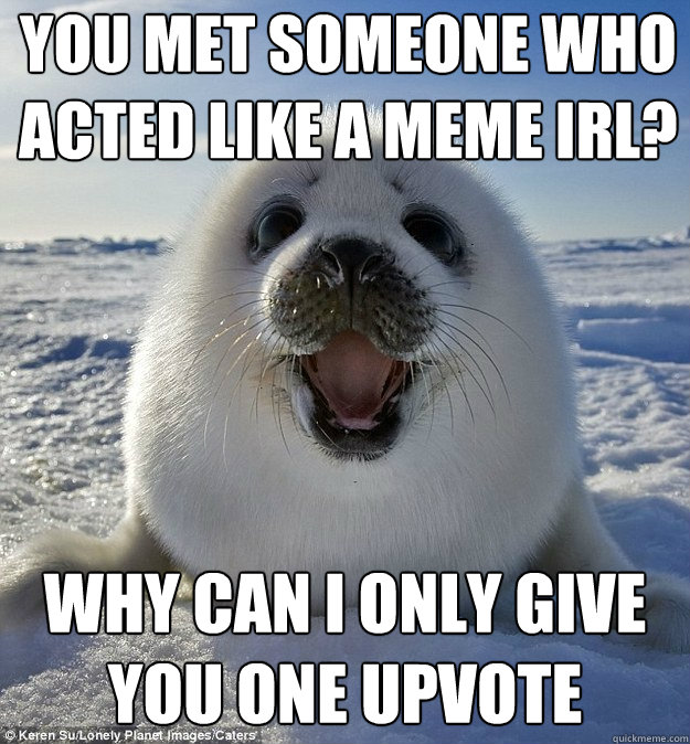 YOU MET SOMEONE WHO ACTED LIKE A MEME IRL? WHY CAN I ONLY GIVE YOU ONE UPVOTE - YOU MET SOMEONE WHO ACTED LIKE A MEME IRL? WHY CAN I ONLY GIVE YOU ONE UPVOTE  Easily Pleased Seal