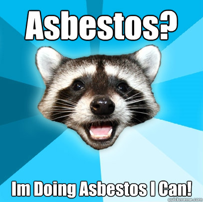 Asbestos? Im Doing Asbestos I Can! - Asbestos? Im Doing Asbestos I Can!  Lame Pun Coon