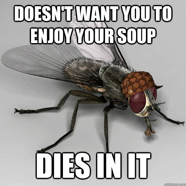 doesn't want you to enjoy your soup dies in it - doesn't want you to enjoy your soup dies in it  Scumbag Fly
