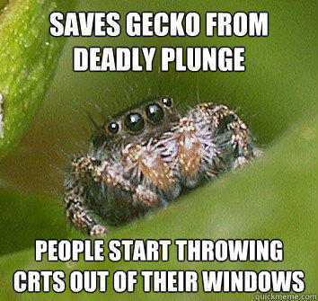 Saves gecko from deadly plunge people start throwing crts out of their windows - Saves gecko from deadly plunge people start throwing crts out of their windows  Misunderstood Spider