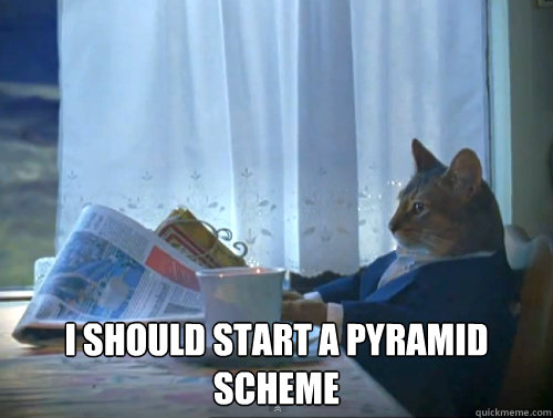 I should start a pyramid scheme -  I should start a pyramid scheme  The One Percent Cat