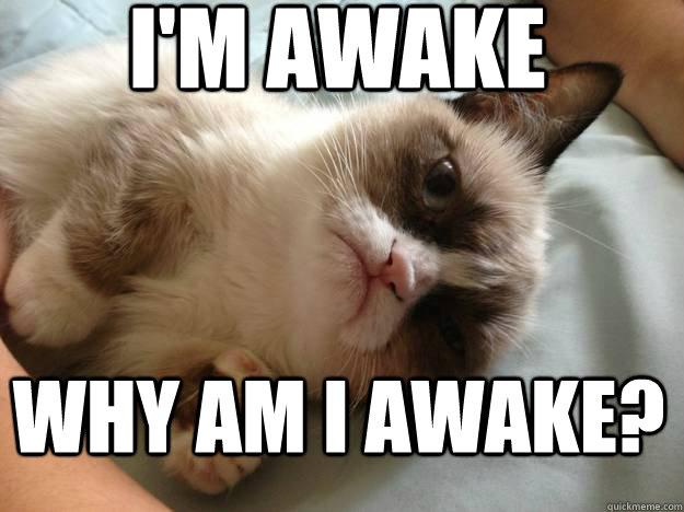 Confused Grumpy Cat Memes Quickmeme