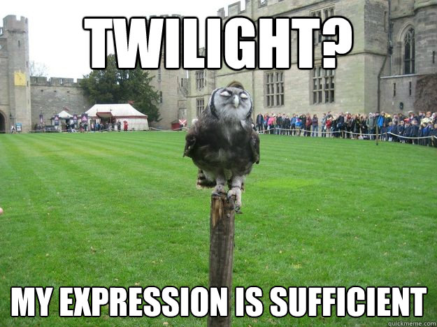 twilight? my expression is sufficient - twilight? my expression is sufficient  Pompous Owl