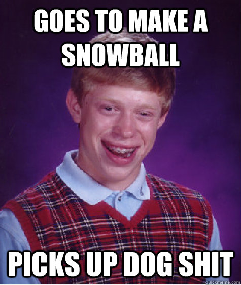 Goes to make a snowball Picks up dog shit - Goes to make a snowball Picks up dog shit  Bad Luck Brian