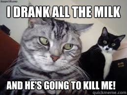 I drank all the milk And he's going to kill me!