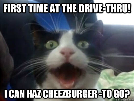 First time at the drive-thru! i can haz cheezburger -to go?