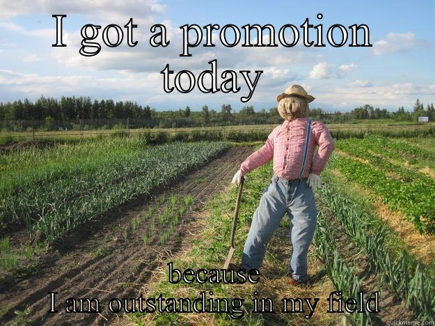 I GOT A PROMOTION TODAY BECAUSE I AM OUTSTANDING IN MY FIELD Scarecrow