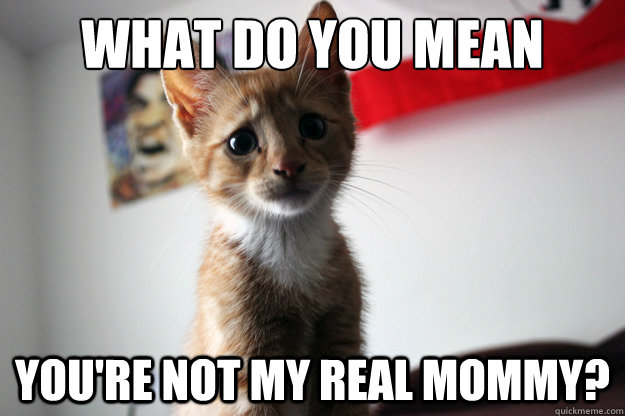what do you mean  you're not my real mommy?
