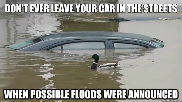 Don't ever leave your car in the streets when possible floods were announced - Don't ever leave your car in the streets when possible floods were announced  Misc