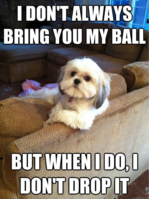 I don't always bring you my ball but when i do, i don't drop it - I don't always bring you my ball but when i do, i don't drop it  Misc