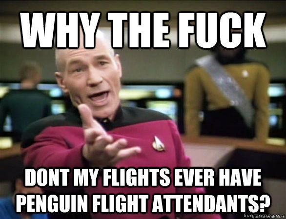 why the fuck Dont my flights ever have penguin flight attendants? - why the fuck Dont my flights ever have penguin flight attendants?  Annoyed Picard HD