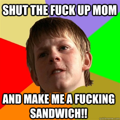 Shut the Fuck up mom and make me a fucking sandwich!!  Angry School Boy