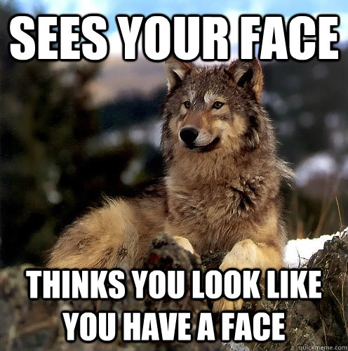 Sees your face thinks you look like you have a face  Aspie Wolf