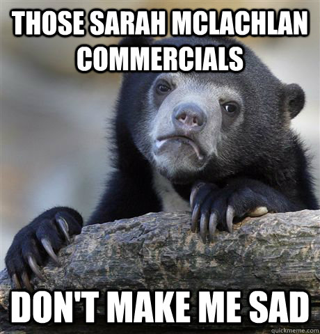 Those Sarah McLachlan commercials Don't make me sad - Those Sarah McLachlan commercials Don't make me sad  Confession Bear