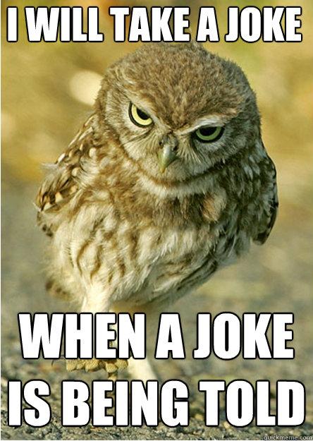 I WILL TAKE A JOKE WHEN A JOKE IS BEING TOLD - I WILL TAKE A JOKE WHEN A JOKE IS BEING TOLD  Angry Owl