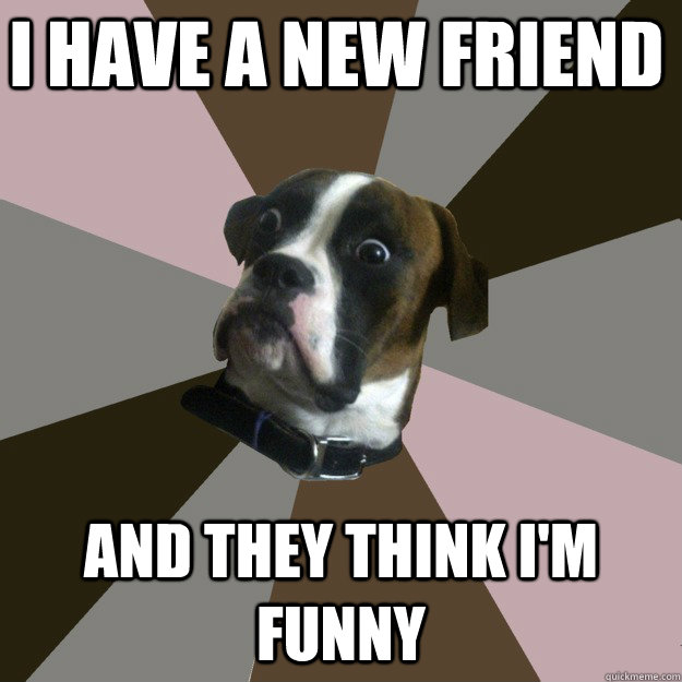 I have a new friend  and they think i'm funny  Genuinely Surprised Dog