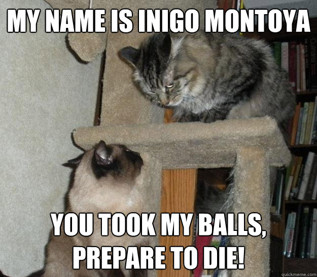 My name is Inigo Montoya  You took my balls, prepare to die!