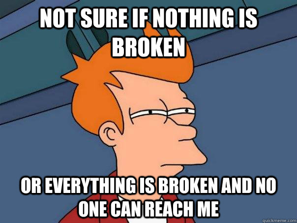 Not sure if nothing is broken Or everything is broken and no one can reach me  Futurama Fry