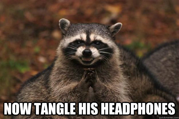 Now tangle his headphones -  Now tangle his headphones  Evil Plotting Raccoon