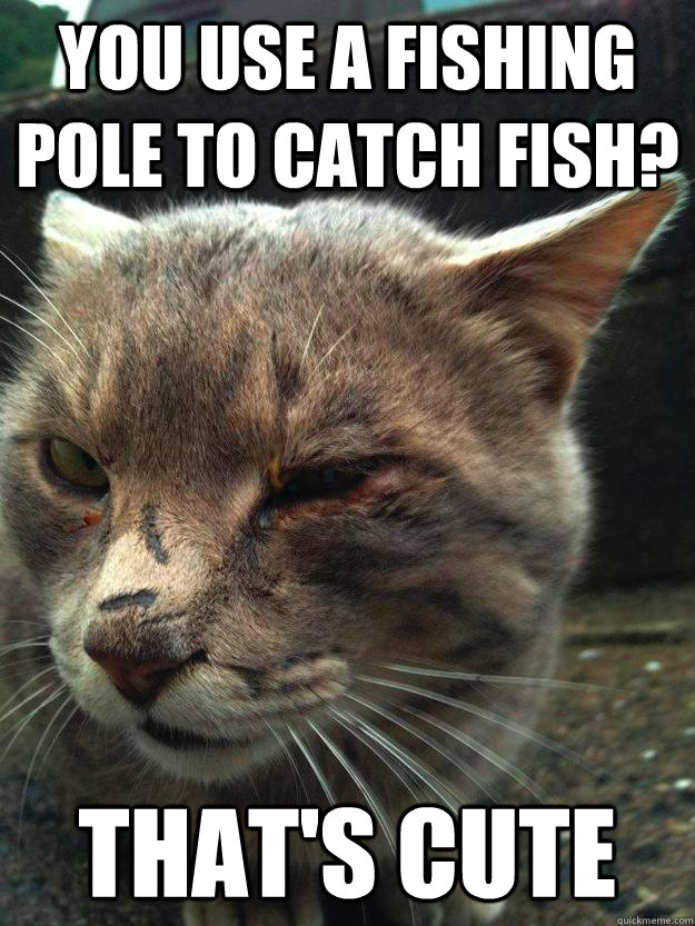 You Use A Fishing Pole To Catch Fish Thats Cute Tough Guy Cat