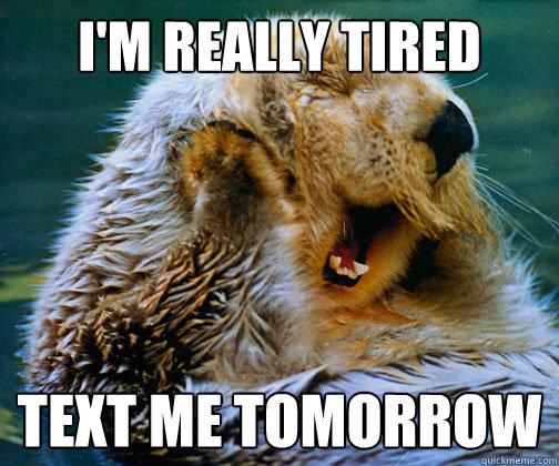 I'm really tired text me tomorrow - I'm really tired text me tomorrow  Sleepy Otter