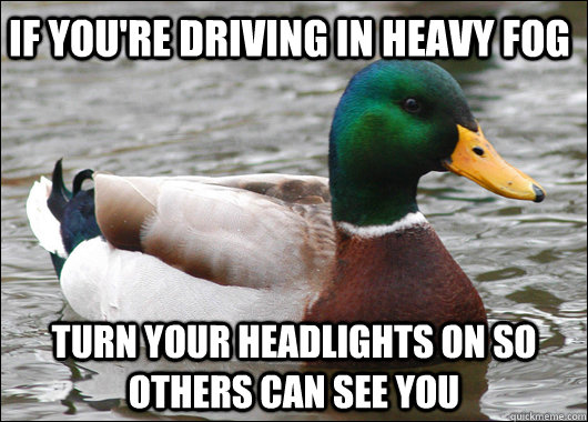 If you're driving in heavy fog turn your headlights on so others can see you - If you're driving in heavy fog turn your headlights on so others can see you  Actual Advice Mallard