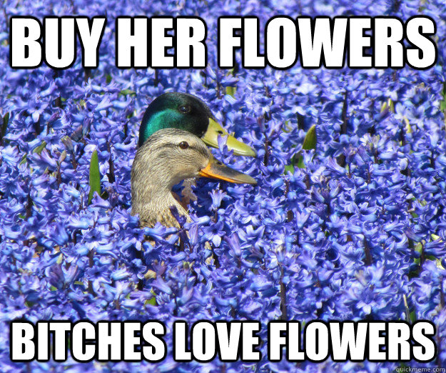 9d80edf8fe0b105b81e1f67a0ccf2015b3b57b7f1fce37ee367ebb2b7fa0a6bf buy her flowers bitches love flowers misc quickmeme