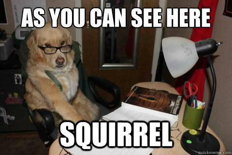 as you can see here squirrel - as you can see here squirrel  Financial Advice Dog