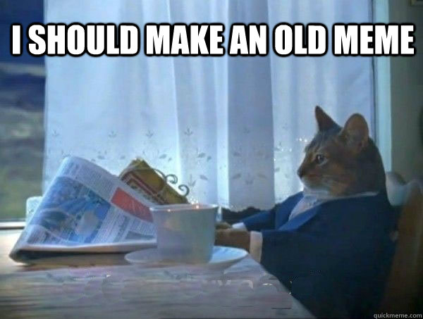 I should make an old meme  - I should make an old meme   morning realization newspaper cat meme