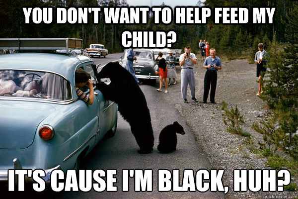 You don't want to help feed my child? It's cause I'm black, huh?   Ghetto bear