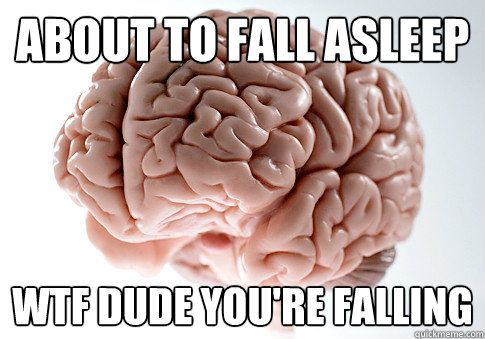 About to fall asleep WTF DUDE YOU'RE FALLING - About to fall asleep WTF DUDE YOU'RE FALLING  Scumbag Brain