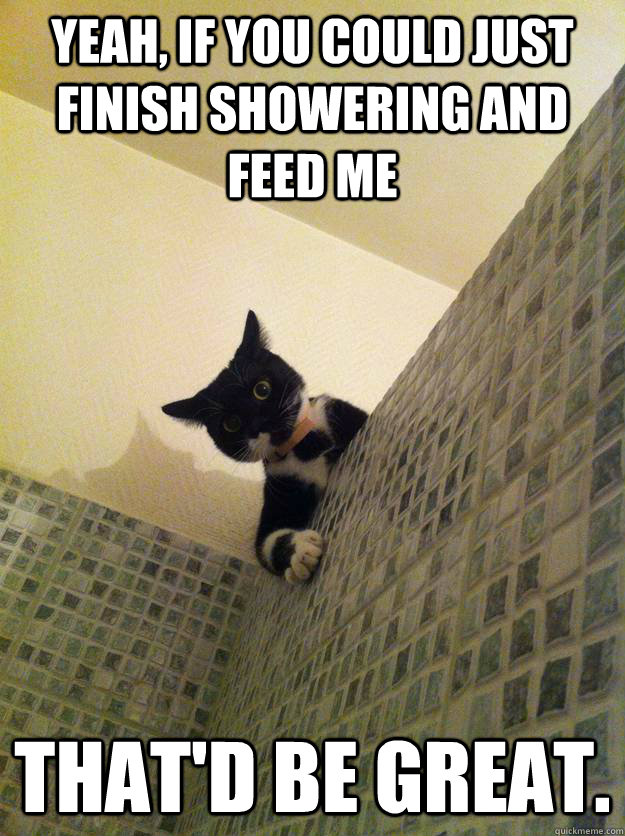 Yeah, if you could just finish showering and feed me That'd be great.