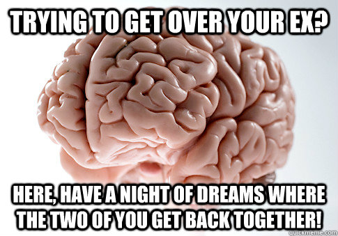 Trying to get over your ex? Here, have a night of dreams where the two of you get back together! - Trying to get over your ex? Here, have a night of dreams where the two of you get back together!  Scumbag Brain