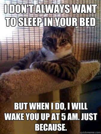 I don't always want to sleep in your bed but when I do, i will wake you up at 5 AM. just because. - I don't always want to sleep in your bed but when I do, i will wake you up at 5 AM. just because.  The Most Interesting Cat in the World