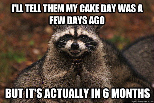 I'll tell them my cake day was a few days ago But it's actually in 6 months - I'll tell them my cake day was a few days ago But it's actually in 6 months  Insidious Racoon 2